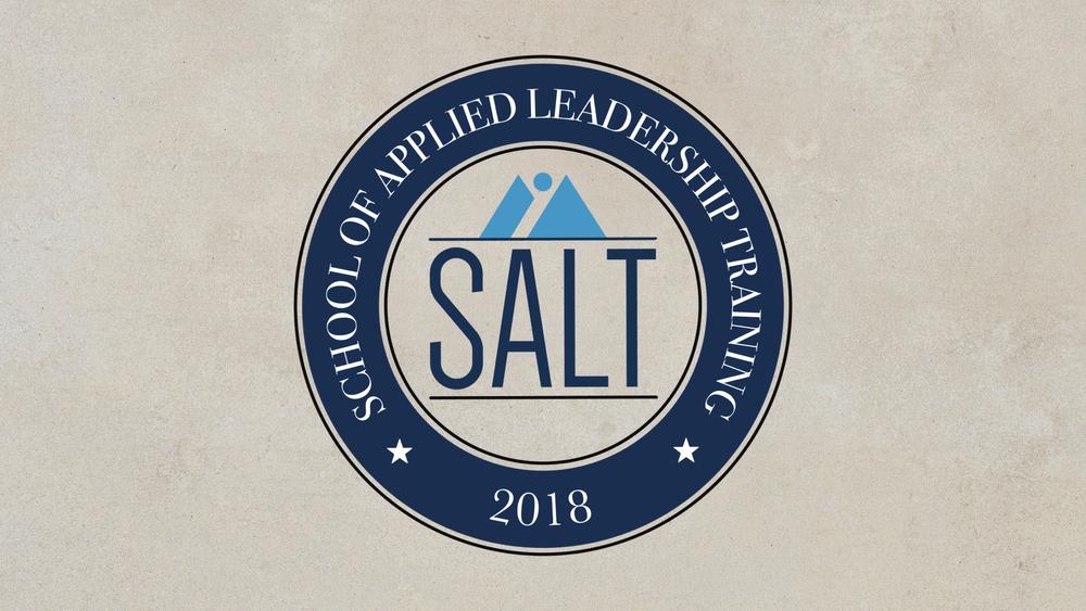 Promo - Salt.png