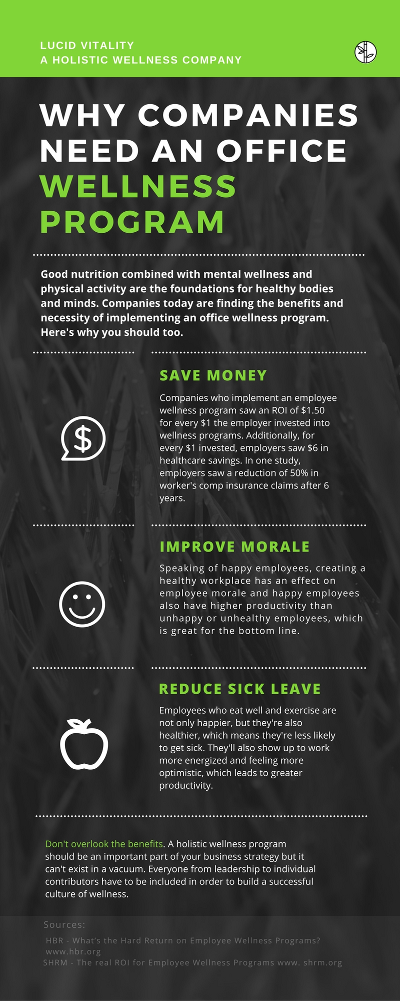 wellness program infographic