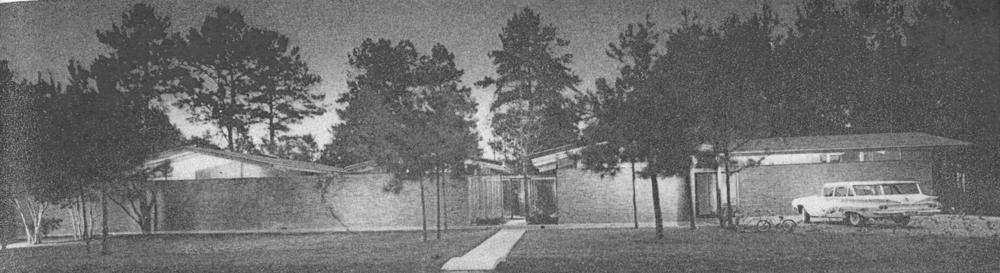 desmond house elevation.png