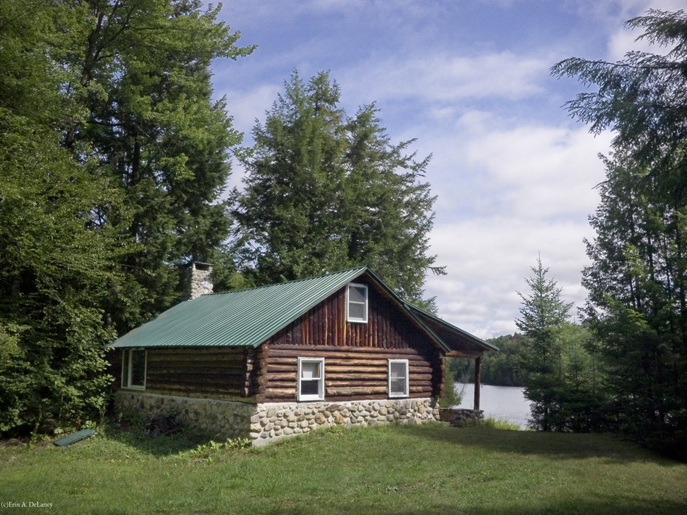 Log Cabin in the Pines, 2012