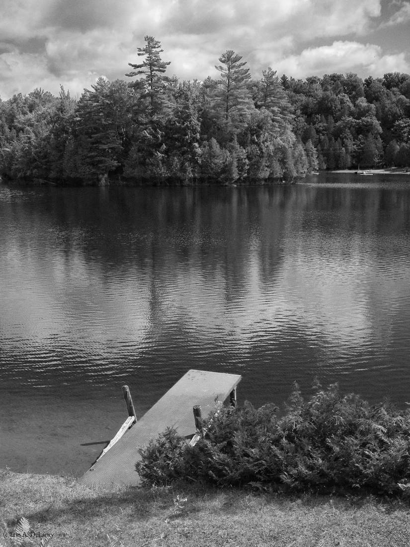 Hosmer Pond Dock, Black and White, 2014