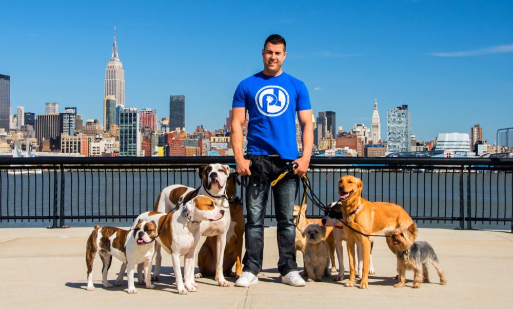 Pack Leader Dog Training Hoboken
