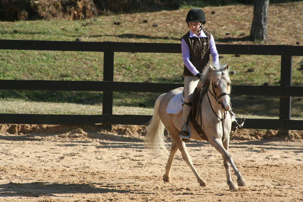 Jill Alexander with her pony Evans Conaire participating in the Joey Brumbaugh Clinic.