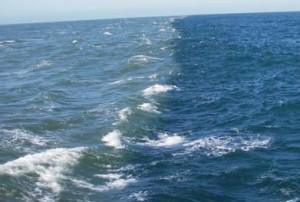 ocean_river