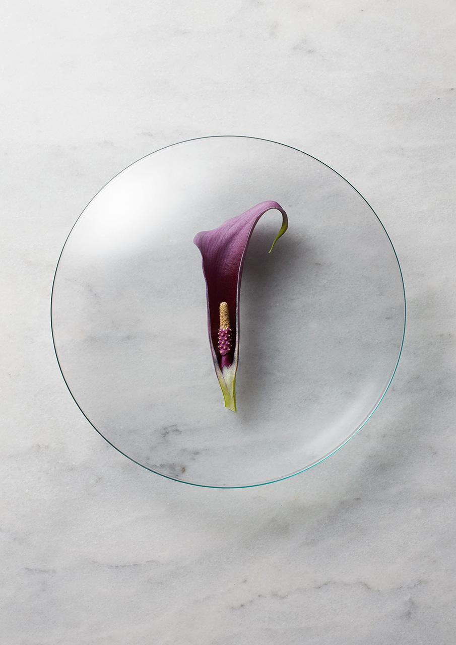 WatchGlass-PurpleLilly.jpg