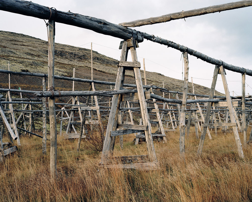 Fish Drying - Patreksfjordur.jpg