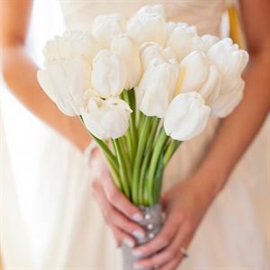 RNW- Tulips.jpg
