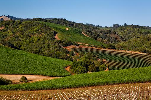 Best Time to Visit: May to October, especially during grape harvest season.