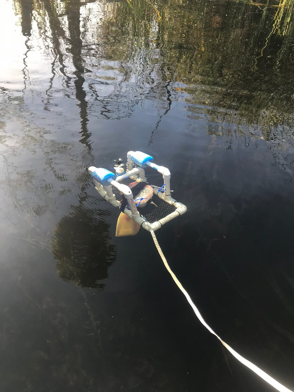 12/17: Taking lake measurements using thermistor and ROV. Task for next semester: add more sensors and autonomy.