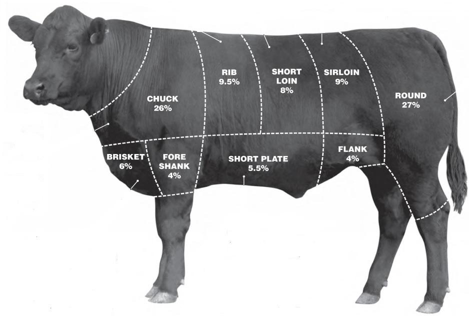 Angus beef chart,  American Angus Association