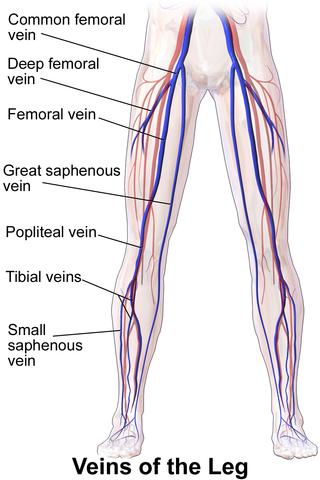 understanding is key! — vein & vascular center  vein & vascular center