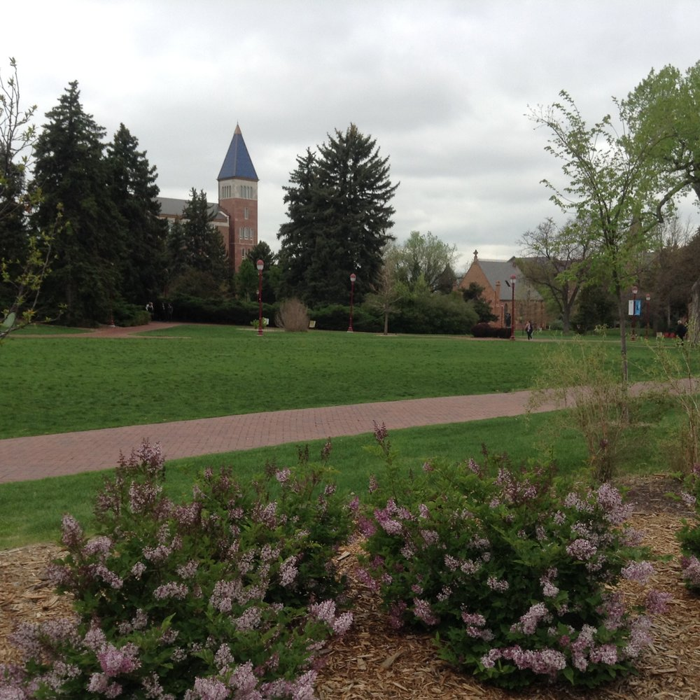 UNIV. OF DENVER GROUNDS