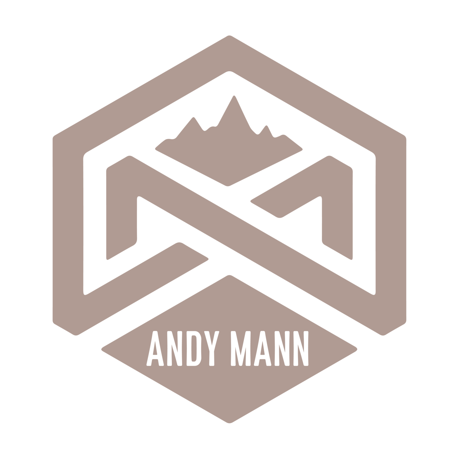 andy mann :: photographer :: director ::