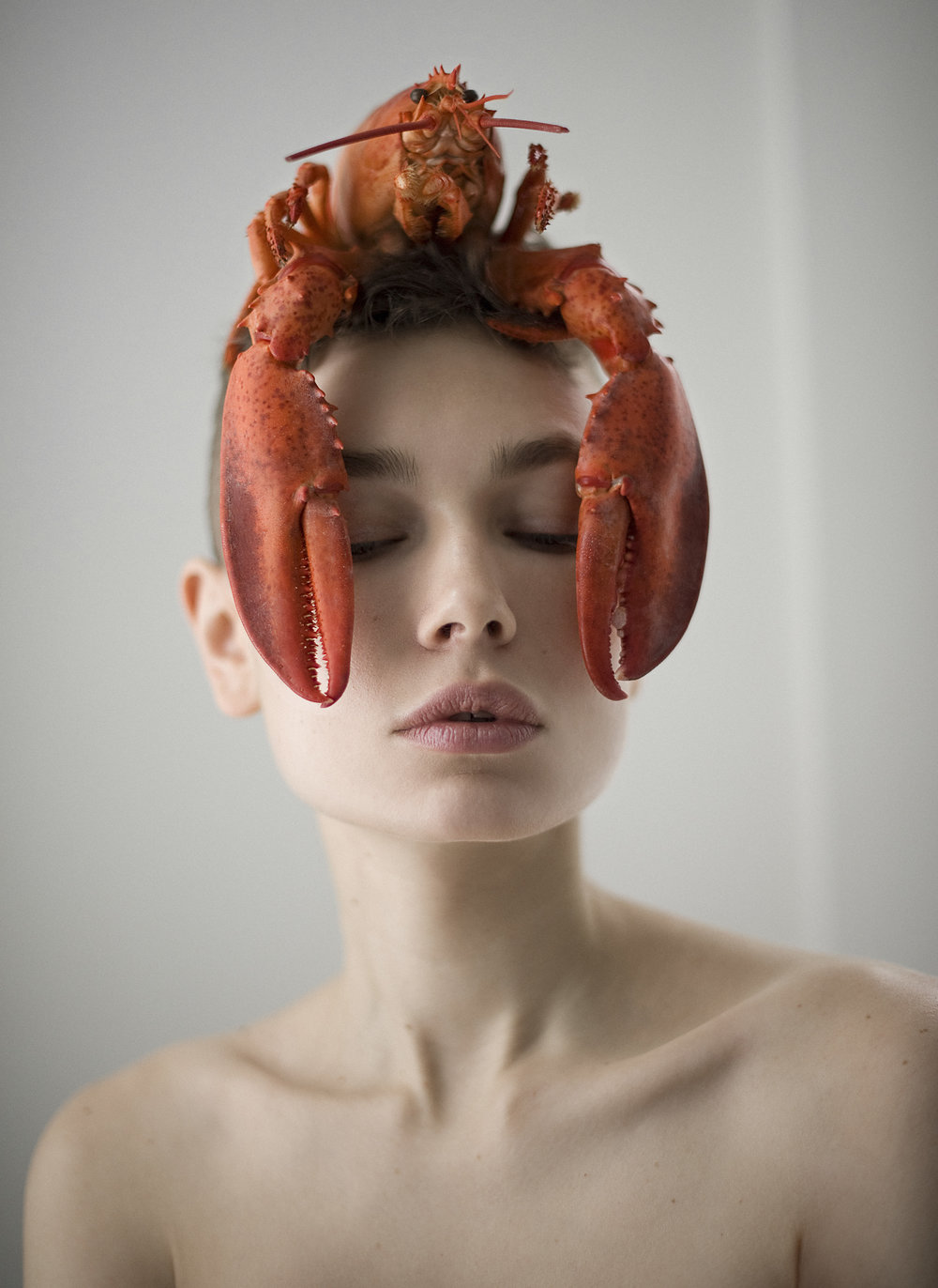 octopus-339 copy.jpg