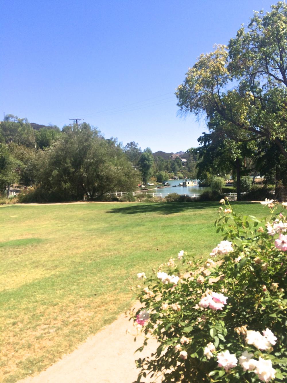 malibou-lake-lawn.jpg
