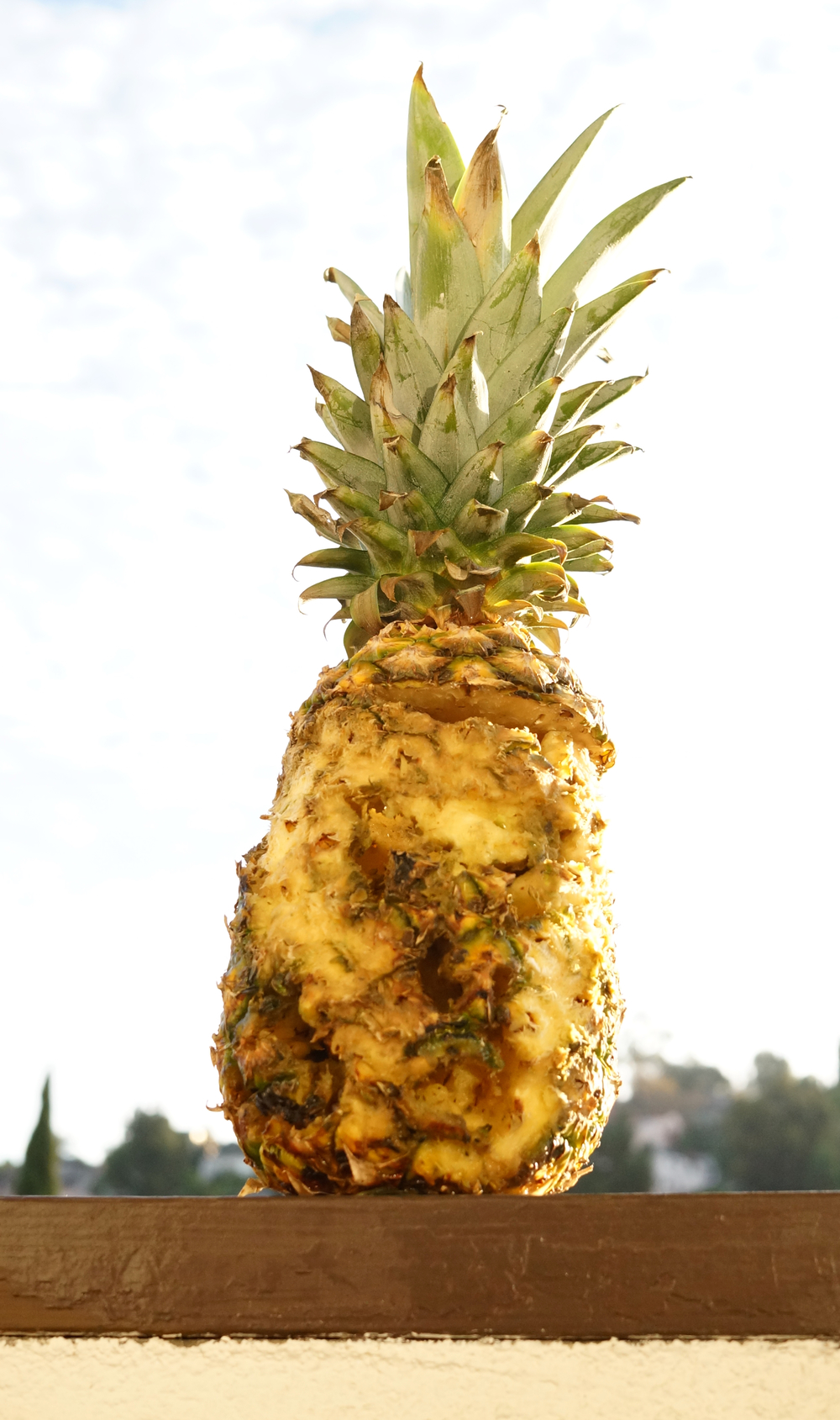dremel-pineapple.jpg