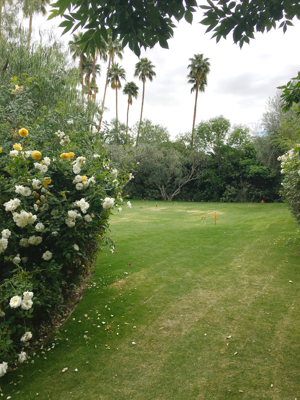 parker-palm-springs-croquet.jpg
