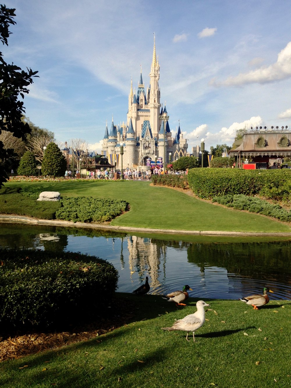 walt-disney-world-cinderella-castle.jpg