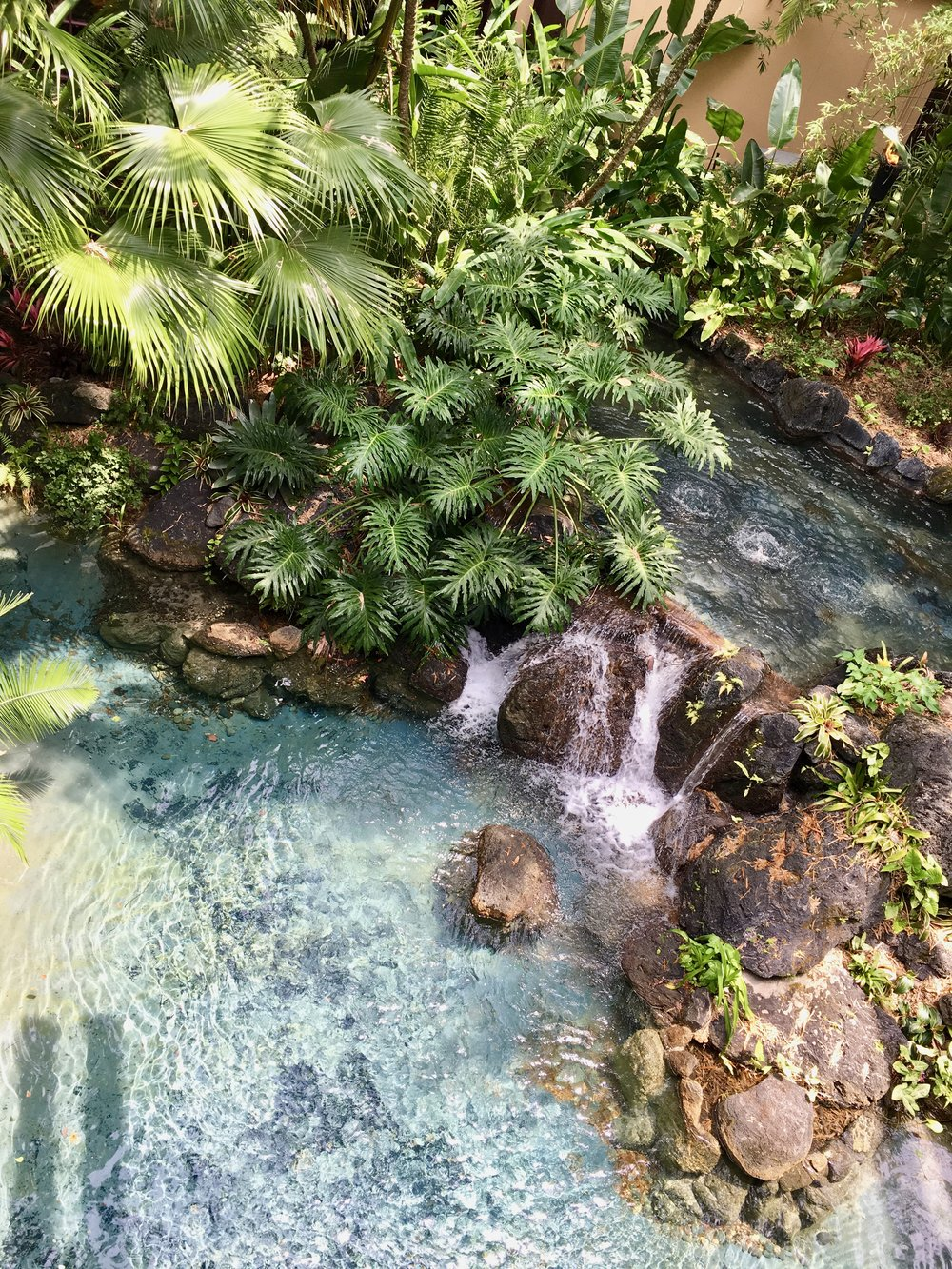 polynesian-village-resort-landscaping.jpg