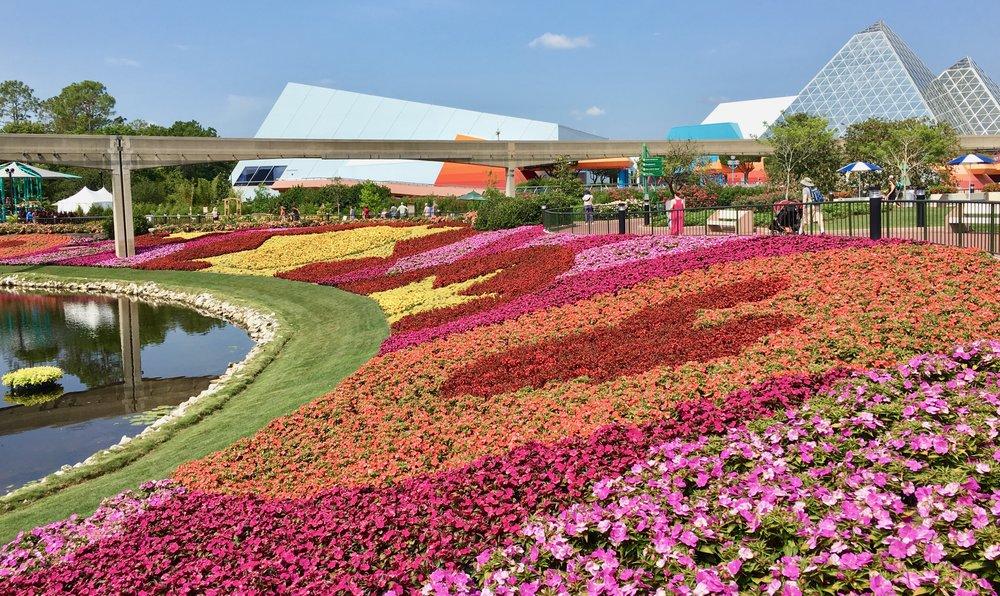 epcot-flower-garden-festival.jpg