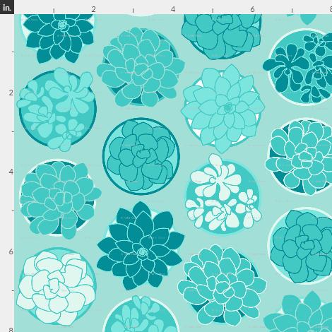 4-succulents.jpg