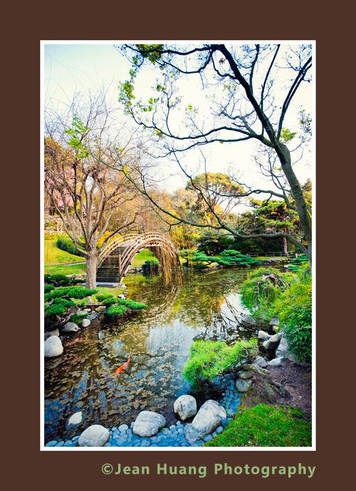 Japanese Garden in Huntington Library - ©Jean Huang Photography