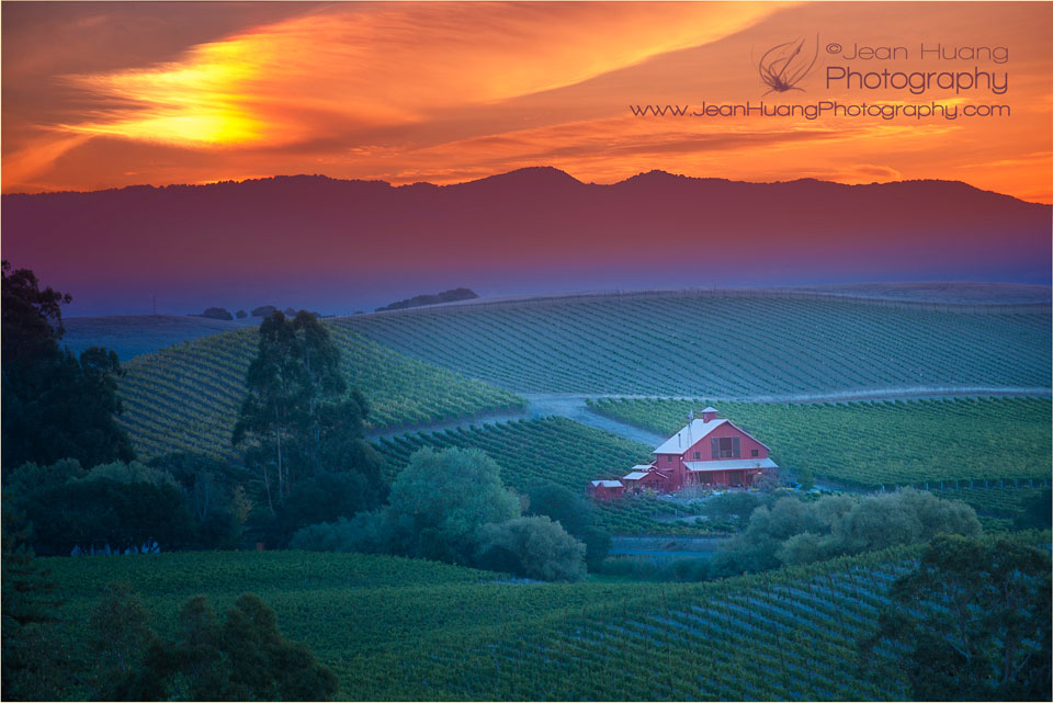 Sunrise-in-Napa-California-©Jean-Huang-Photography
