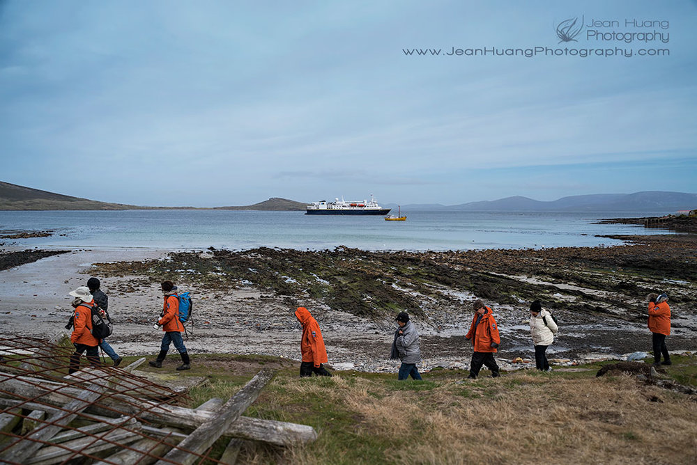 Carcass Island, Falkland Islands - ©Jean Huang Photography