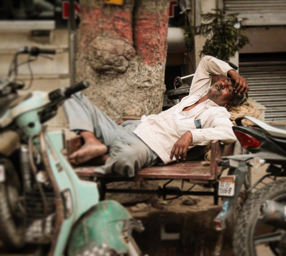 Doooooood... Napping like an elegant boss!! — in  New Delhi, India .