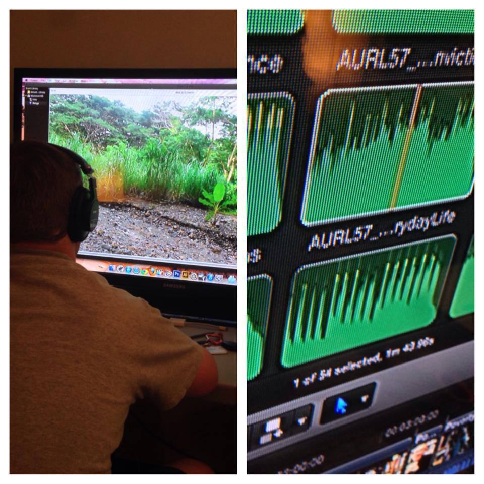 Refuge Film Audio