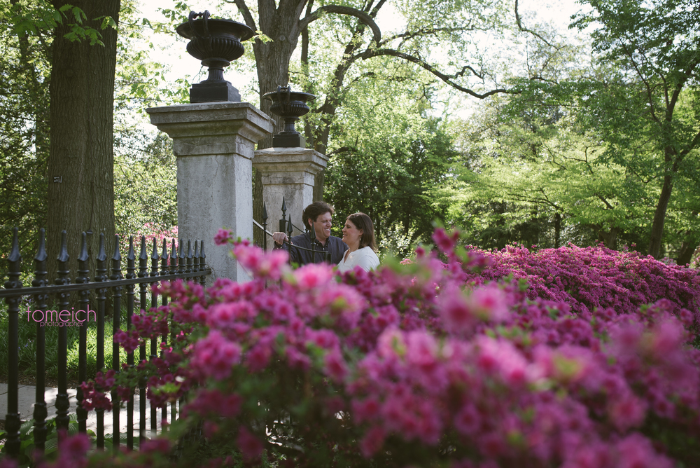An engagement portrait in Saint Louis Botanical Garden. Couple at the a gate near purple flowers. #stlouisbotanicalgarden #stlengagement
