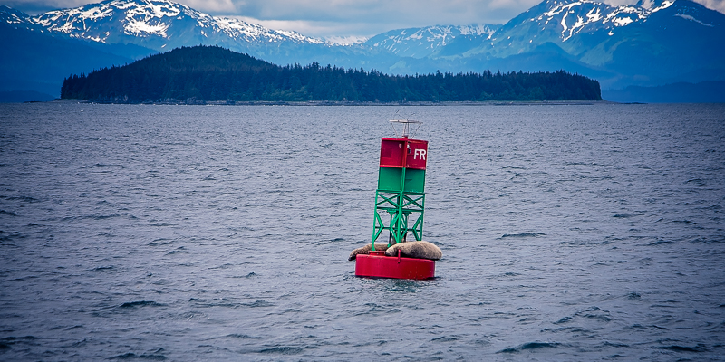 AlaskaCruise-tomeichphotographer-3.jpg
