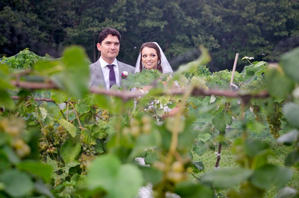 villa antonio winery wedding - tomeich.com-52.jpg