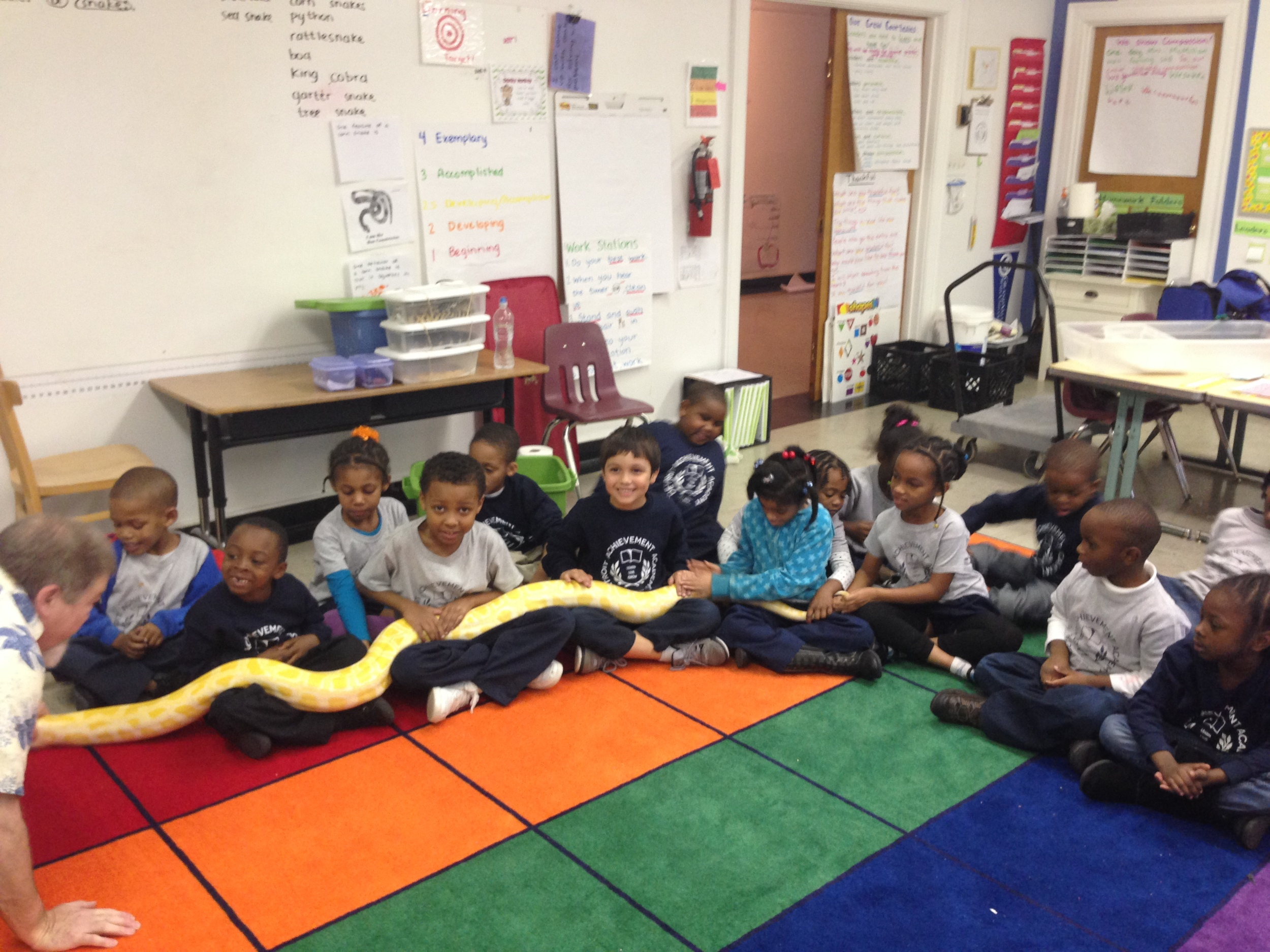 First graders hold python, Cinderella, with the help of Mr. Brophy, our snake expert!
