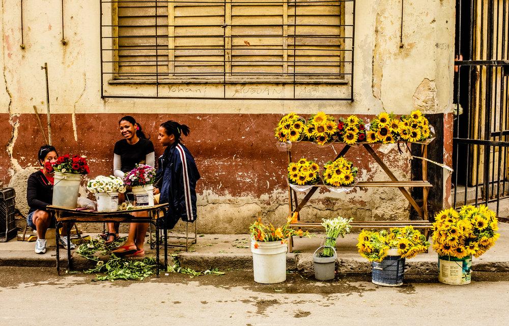 Sunflower girls.jpg