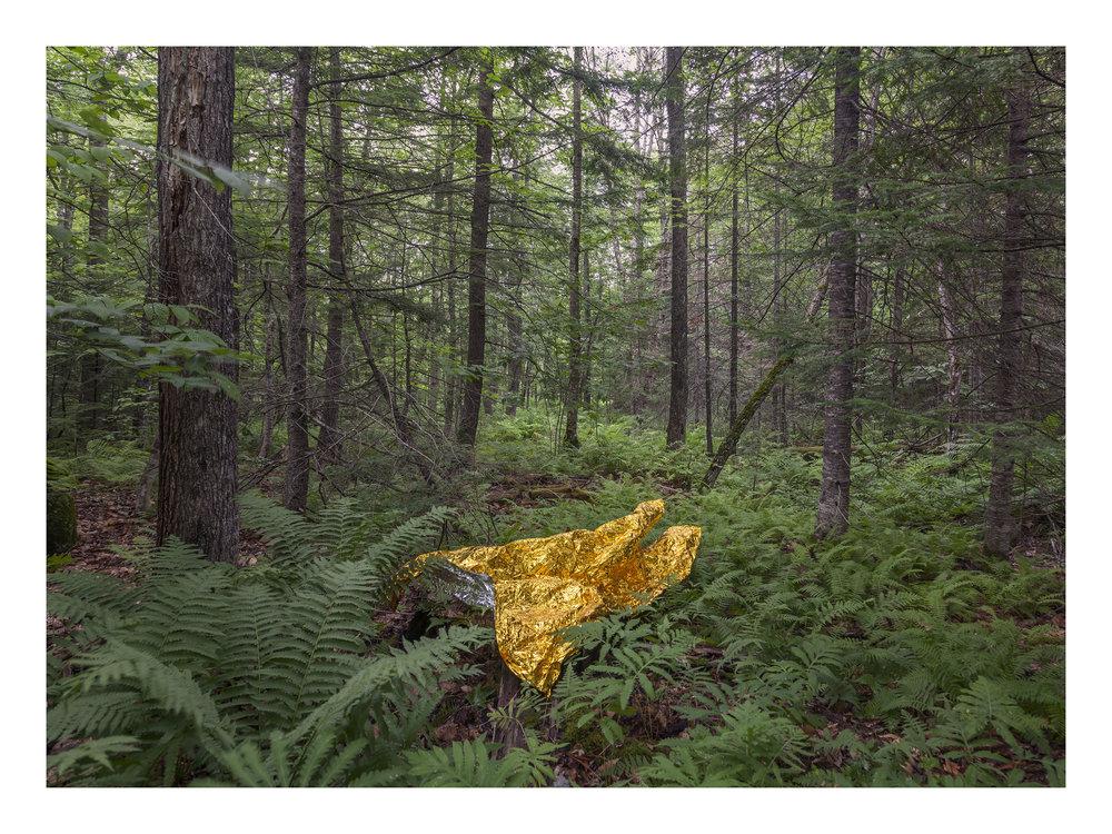Reflexión, 2016, Fotografía, 120 x 90 cm, ed 1/5