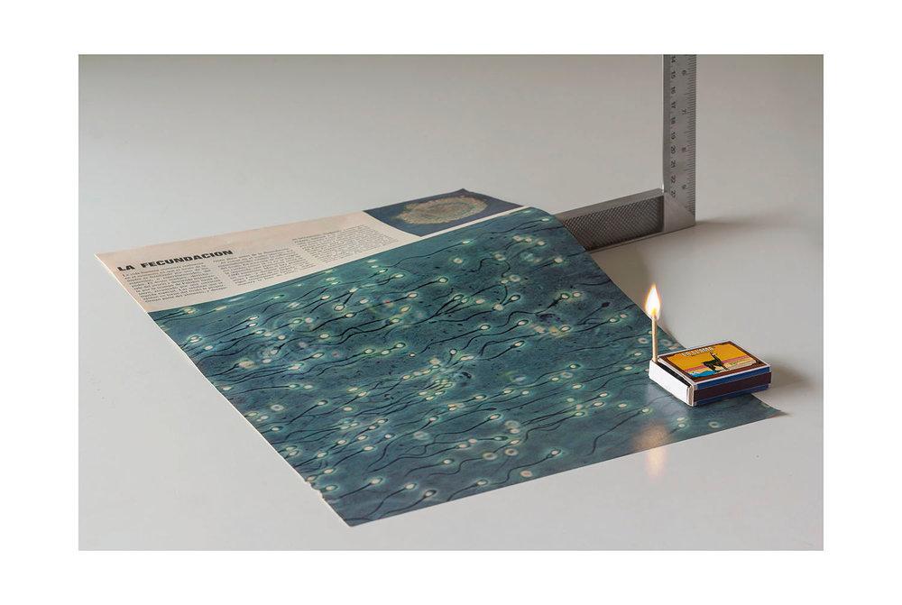 Artificio 02, 2017, Fotografía Impresión Giclée, 90 x 60 cm, ed 2/3