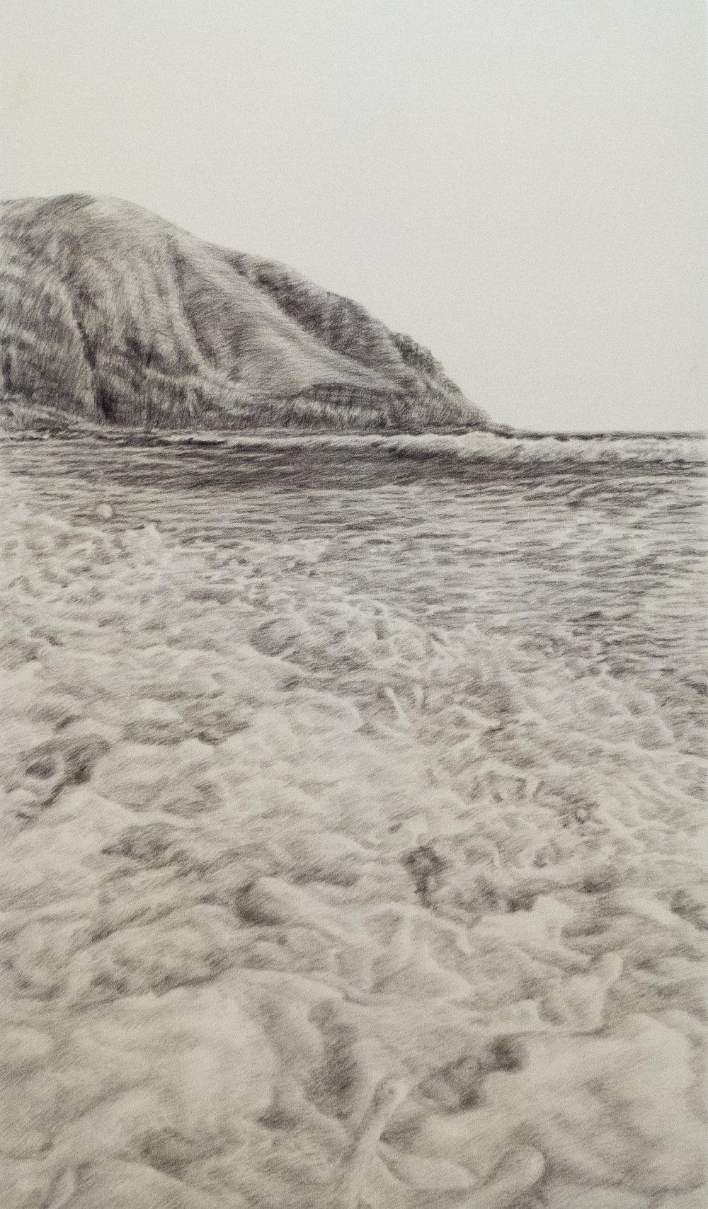 Fronteras habitables., 2017, Carbón vegetal sobre tela, 168 x 100 cm, Pieza única