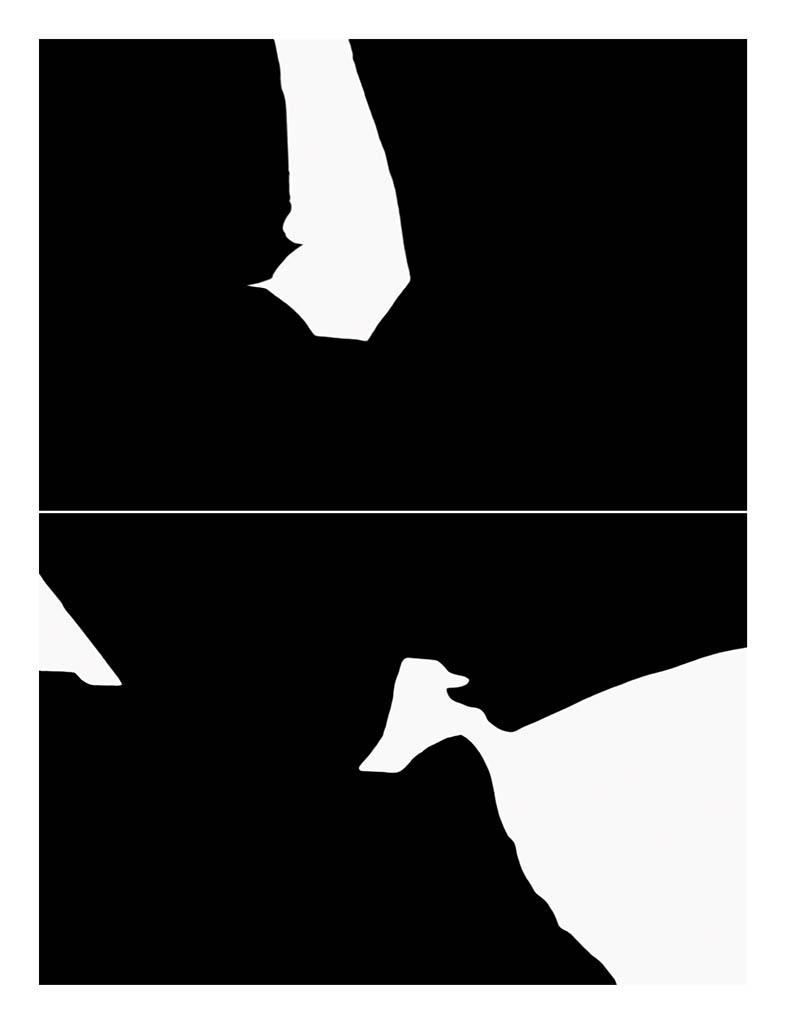 Billy Hare. NLN 7734-49, 2014. Impresión por inyección de tinta sobre papel baritado. 145 x 111 cm. Ed. 1_1.jpg