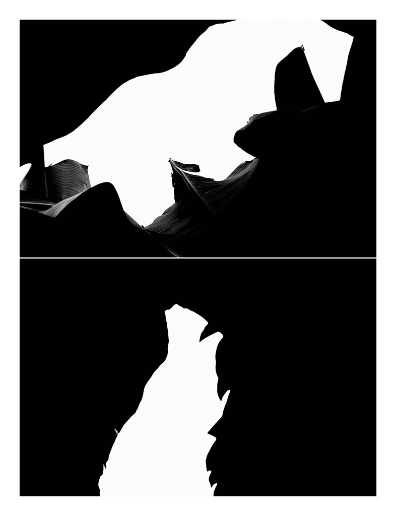 Billy Hare. NLN 8260 - 57, 2014. Impresión por inyección de tinta sobre papel baritado. 145 x 111 cm. Ed. 1_1.jpg