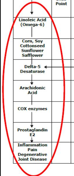 arachidonic acid.png