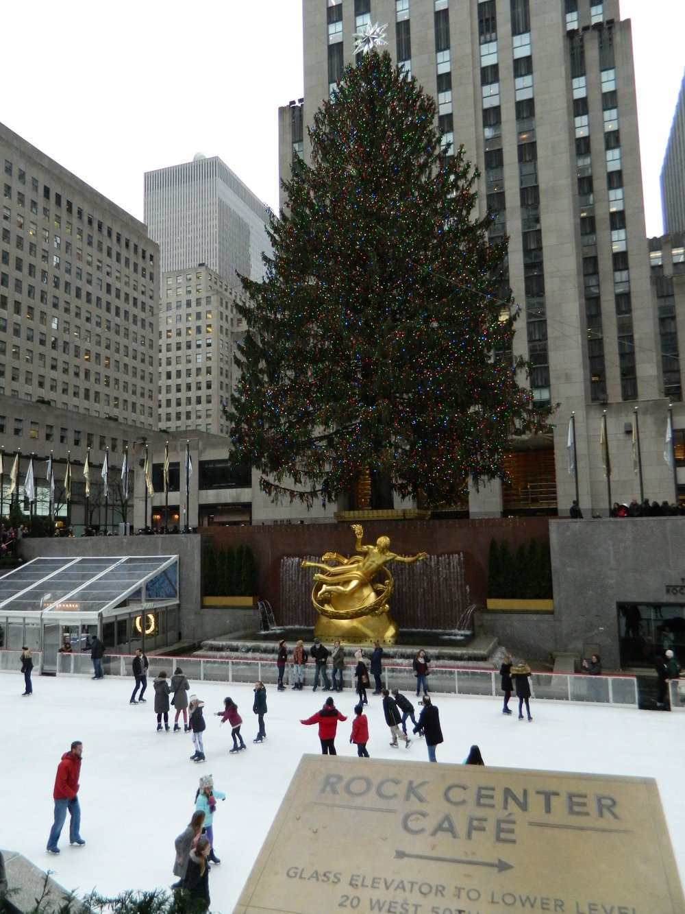 The gorgeous tree in Rockefeller Plaza