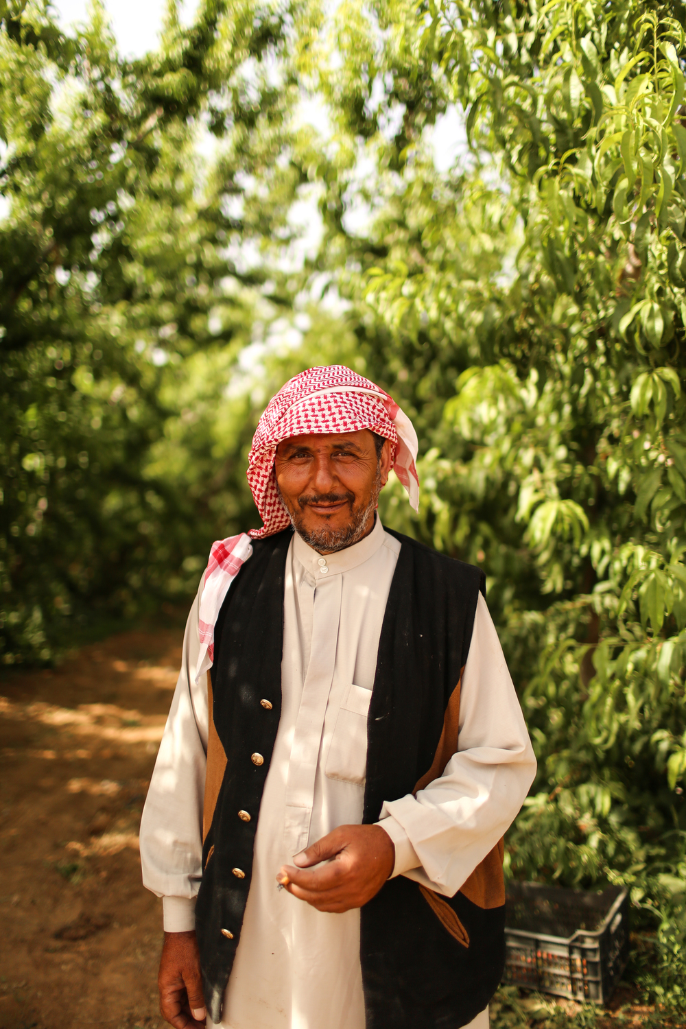A Syrian refugee fruit farmer in Mafraq, Jordan.