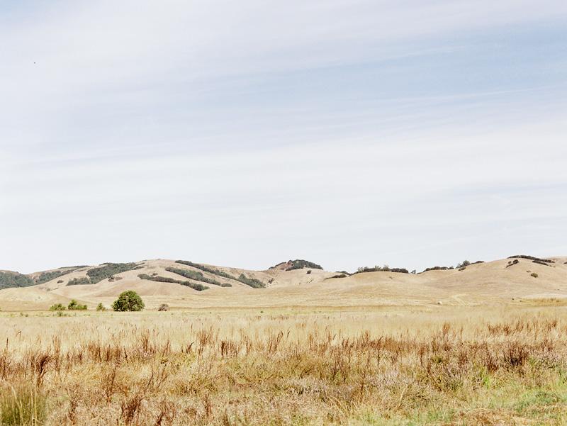 california-01.jpg