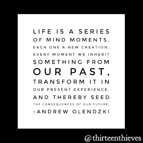 Andrew Olendzki Quote Thirteen Thieves Blog