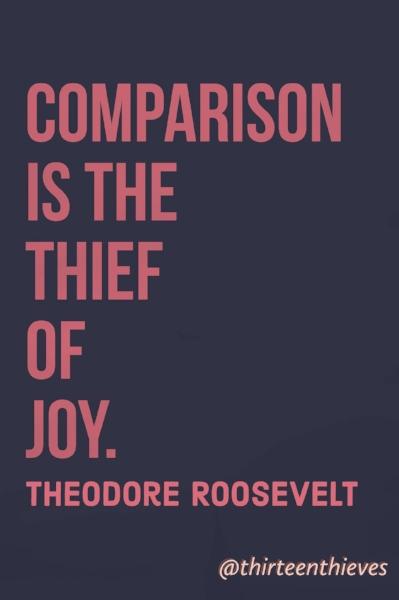 Theodore Roosevelt Thirteen Thieves Blog