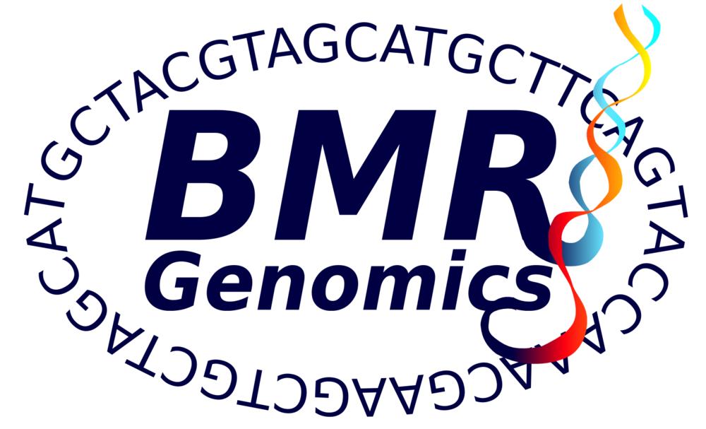 Copy of BMR logo