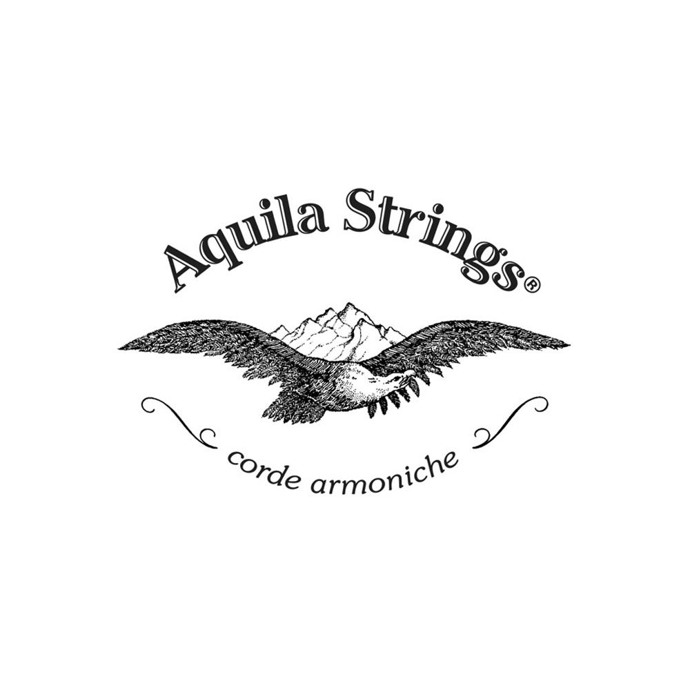 Aquila_PP.png