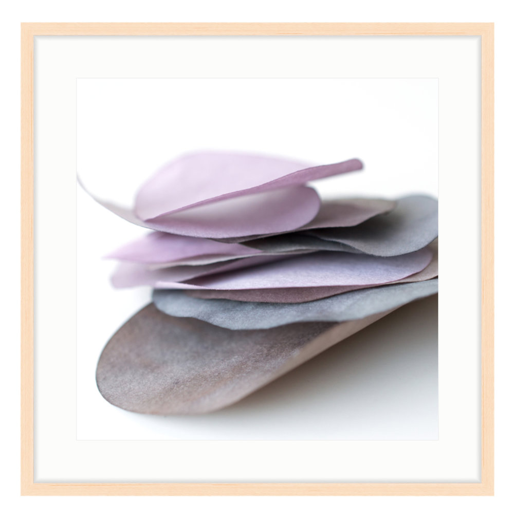 """Paper Petal 26, 2017 20"""" x 20"""" (other sizes available) Photograph of Mulberry Paper, Wax, Watercolor"""