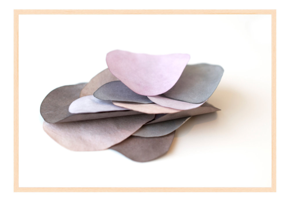 """Paper Petal 38, 2017 24"""" x 16.25"""" (other sizes available) Photograph of Mulberry Paper, Wax, Watercolor"""